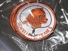 Wood Badge Bear Gilwell Team 1 Patrol Medallion