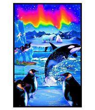 ARCTIC AURORA - BLACKLIGHT POSTER - 23X35 OCEAN FANTASY ART KILLER WHALE 1992