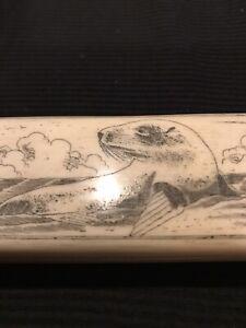 Seal On The Beach scrimshaw box, bone vintage handmade