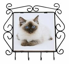 Ragdoll Cat with Blue Eyes Wrought Iron Key Holder Hooks Christmas Gif, AC-159KH