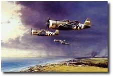 Thunderbolt Strike by Robert Taylor- P-47 Thunderbolt - 3 Signatures