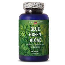 Healthy Supply for the Day - Organic Blue Green Algae 500mg - Klamath Powder 1B