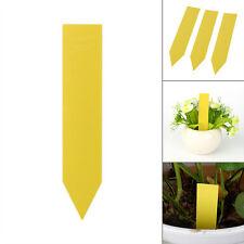 100x4pouce Jardin Plante Pot marque Plastique Pieu Garderie La graine Étiquettes