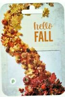 PUBLIX Gift Card - Hello Fall - Autumn Leaves, Pine Cones - No Value - I Combine
