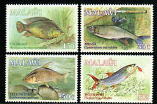 Malawi Stamp - Fish Stamp - NH