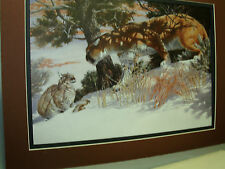 Mountain Lion Bobcat meet Remington Wildlife Exhibit