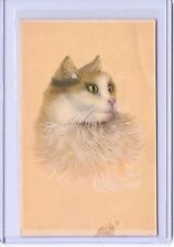 Vintage Art Striking Cat Long Hair Persian Postcard #2064