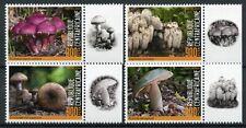 More details for central african republic mushrooms stamps 2020 mnh fungi nature 4v set