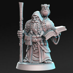 Dramnir - Dwarf Wizard RN Estudios Compatible with Fantasy, RPG and DnD.