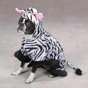 Zack & Zoey ZEBRA Dog Puppy Costume Halloween Party Black & White Stripe XSmall