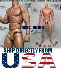 ZC Toys 1/6 Muscular Figure Body Seamless Arm 3.0 TTM19 Fit Wolverine USA