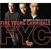 Fine Young Cannibals - She Drives Me Crazy (The Best Of The , 2009)