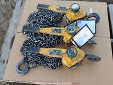 2012 Amh Chain Hoist Lot of (3) Material Chain Fall Hoist Come-A-Long bidadoo