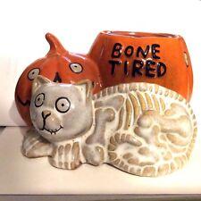 Yankee Halloween Bone Tired Cat Pumpkin 6 Votive Candles New