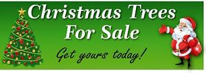 Christmas Trees  For Sale PVC Printed Banner 1656