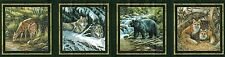 WILD ANIMALS Bear, Wolf, Fox Wallpaper Border B44307S