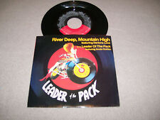 "Darlene Love - River Deep, Moutain High - Elektra 7"" Vinyl 45 PS - 1985 NM-"
