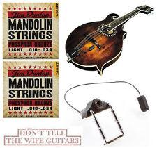 LR BAGGS MANDOLIN RADIUS-M PICKUP INCLUDES THE INPUT JACK  (2 SETS OF STRINGS)