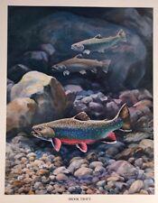 Brook Trout Vintage Bob Hines Fish Art Print US Dept Of Interior Fishing 1972