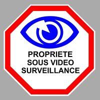 VIDEO SURVEILLANCE PROPRIETE ALARME CAMERA SECURITE 12cm STICKER VA100