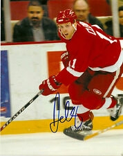 Detroit Red Wings Dan Cleary Signed Autographed 8x10 COA