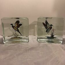 Vintage Wild Game Hand Painted Block Of Glass Artist Signed CARWIN Mid-Century