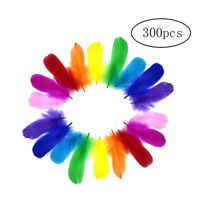 300pcs DIY Colorful Feathers Assorted Color Craft Supplies for Art Crafts Sewing