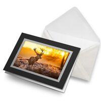 Greetings Card (Black) - Winter Deer Stag Snow Scotland Birthday Gift #8110
