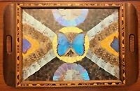 "Vintage Morpho Butterfly Under Glass Inlay Mosaic Large Wooden Tray 20"" x 13"""