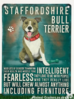 Vintage Style Metal Staffordshire Bull Terrier Staffy Staffie Sign Plaque 20cm