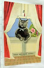 1870's-80's Star Clothing House, Akron, OH Big Cat Insect Bug HTL Trade Card #S