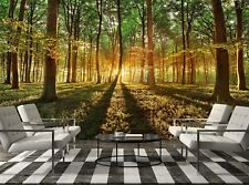 Spring Forest   Photo Wallpaper Wall Mural DECOR Paper Poster Free Paste