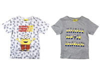 Boys Official Minions Despicable Me 2 Pack Of T-Shirts Children's Kids Ages 3  4