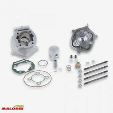 Haut moteur Malossi Moto GILERA 50 Rcr 2006-2017 3112977 Neuf