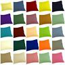 600TC 100%Cotton European/Standard/Queen/King 2PC Button Pillow Case Solid Color