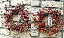 Rot Kranz 20cm Zapfen Hagebutten Orange Türkranz Herbst Wandkranz Beeren Draht