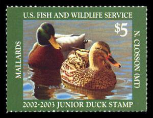 JDS10 — 2002  Junior Duck Stamp