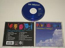 MR MISTER/BROKEN WINGS(CAMDEN 74321 569592) CD ALBUM