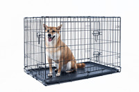 42 inch dog crate folding Portable metal pet cage 2 door with Tray black Kennel