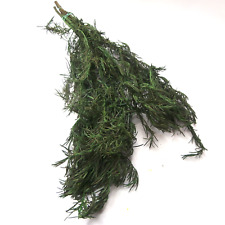 Preserved Rosemary Bunch Anthos Green Leaf Dried Flowers Leaves Floral Arranging