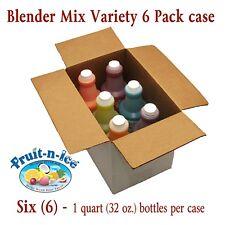 Fruit-N-Ice - Blender Mix Variety 6 Pack Case FREE SHIPPING