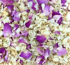 Biodegradable Pink Rose IVORY Wedding Confetti NATURAL Petals DYE-FREE 7 Guests