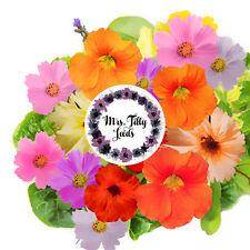 Eßbare Blüten Blumenmischung Gastgeschenk Hochzeit 100 Samen gesund lecker Blume