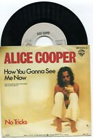 Single Alice Cooper: How You Gonna See Now (Warner Bros. WB 17 270) D 1979