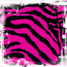 Hydrographics Pink Zebra Animal Pattern Film Hydro dipping Ap00-11