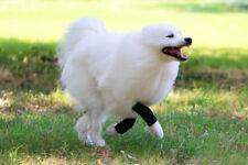 Nature Pet Sport Dog Front Leg Bandage / Dog Agility Wrist Bandage