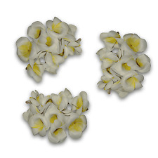 50 x Craft Flowers Foam Real Touch Craft Frangipani Natural White Lemon