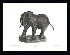PHOTOGRAVURE CARL E. AKELEY ELEPHANT STUNG TAXIDERMY SCULPTURE