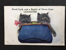 Rare RP Vintage Postcard - Leics #C3 - Cat Pull Out Multi View Leicester