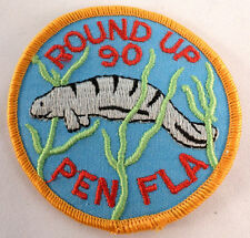 Round Up Pen Fla 1990 Royal Ranger Uniform Patch